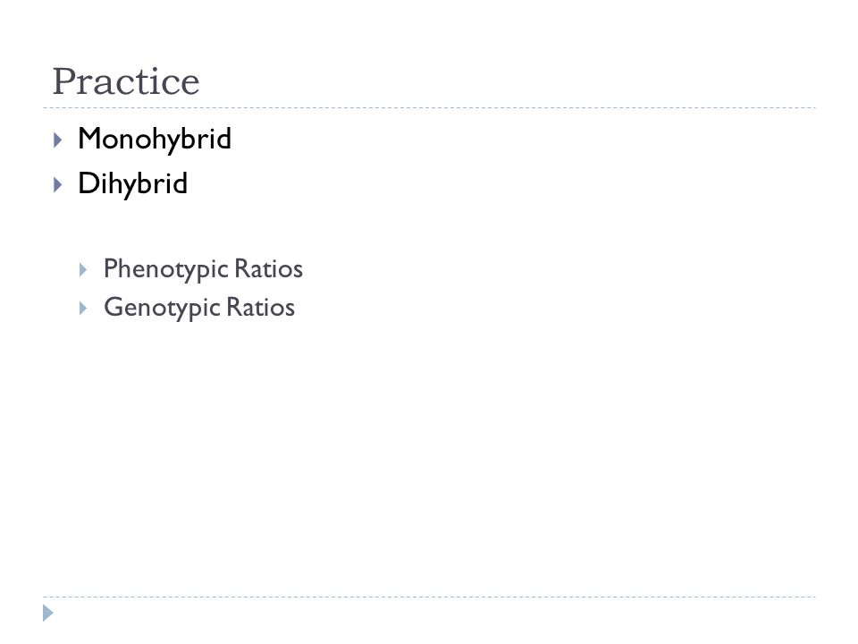 Practice Monohybrid Dihybrid Phenotypic Ratios Genotypic Ratios