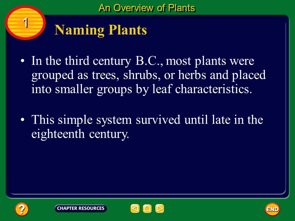 An Overview of Plants 1. Naming Plants.