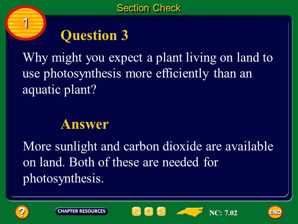 Section Check 1. Question 3. Why might you expect a plant living on land to use photosynthesis more efficiently than an aquatic plant