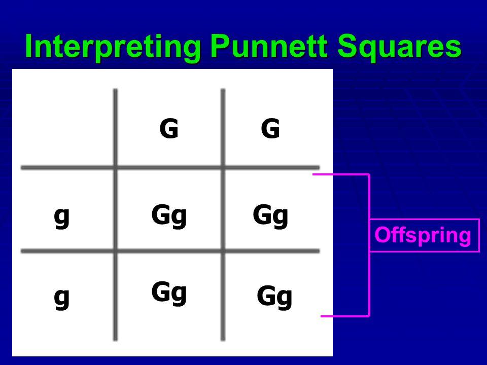 Interpreting Punnett Squares