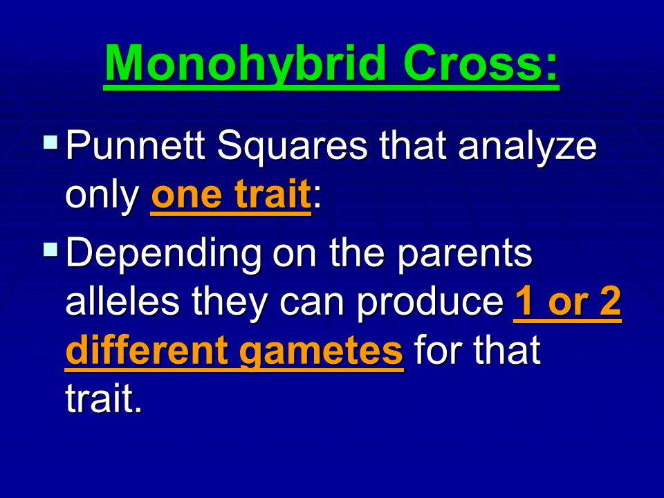 Monohybrid Cross: Punnett Squares that analyze only one trait: