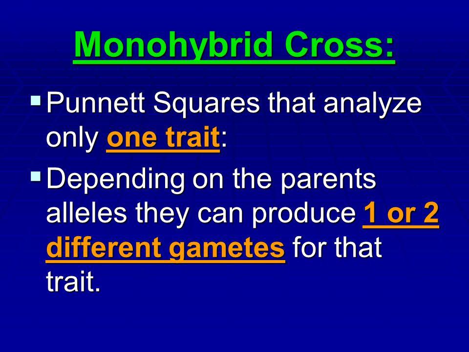 Monohybrid Cross: Punnett Squares that analyze only one trait:
