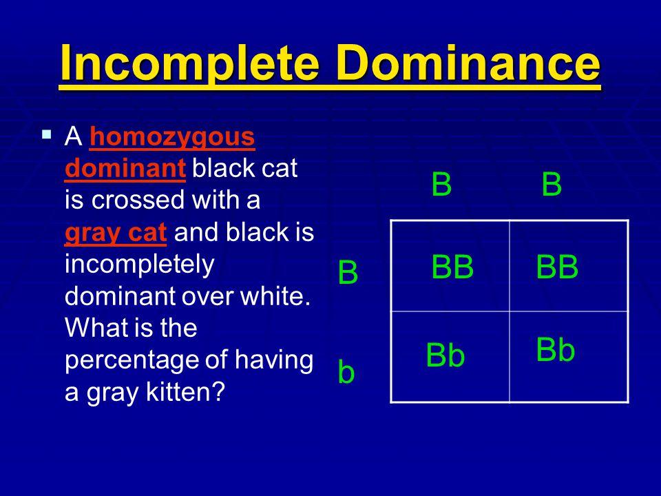Incomplete Dominance B B BB BB B Bb Bb b