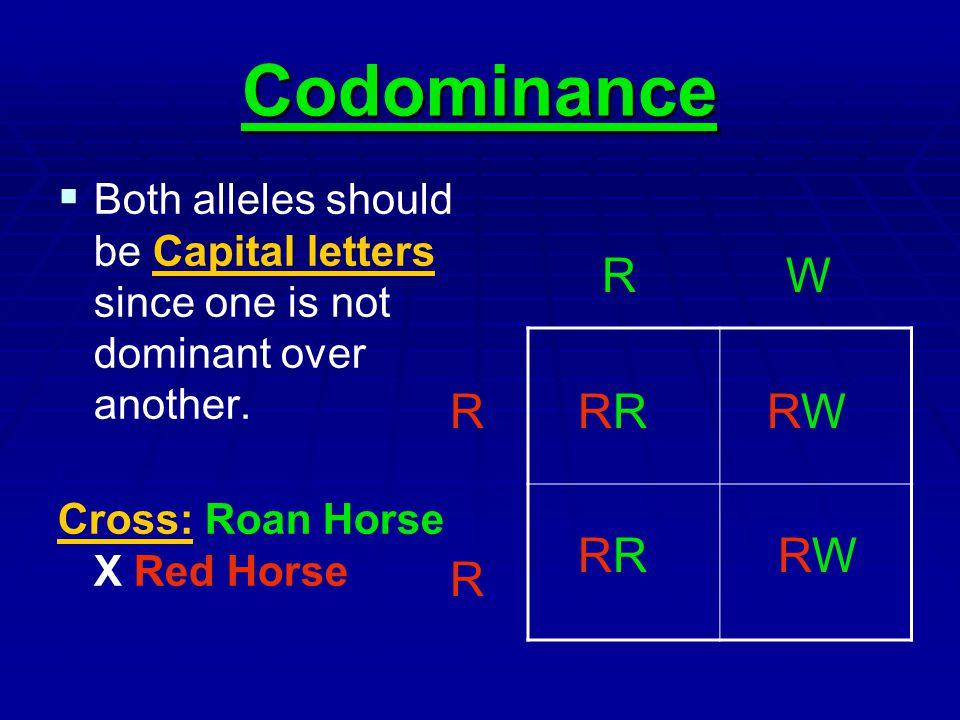 Codominance R W R RR RW RR RW R
