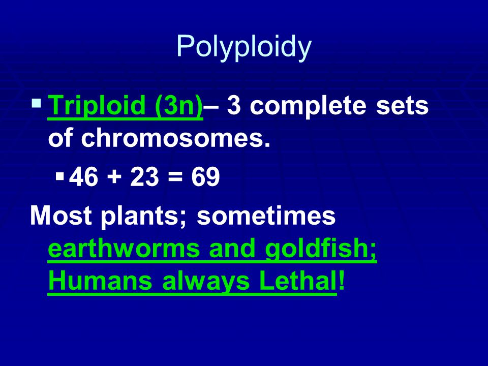Polyploidy Triploid (3n)– 3 complete sets of chromosomes. 46 + 23 = 69