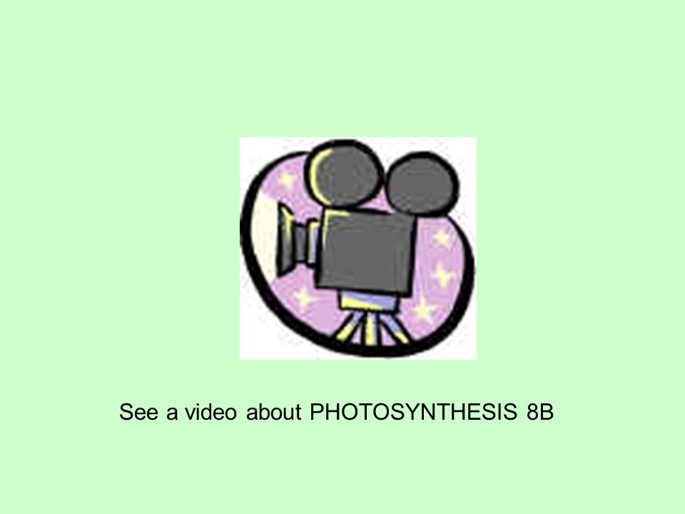 See a video about PHOTOSYNTHESIS 8B