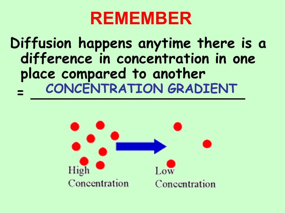 REMEMBER Diffusion happens anytime there is a difference in concentration in one place compared to another.