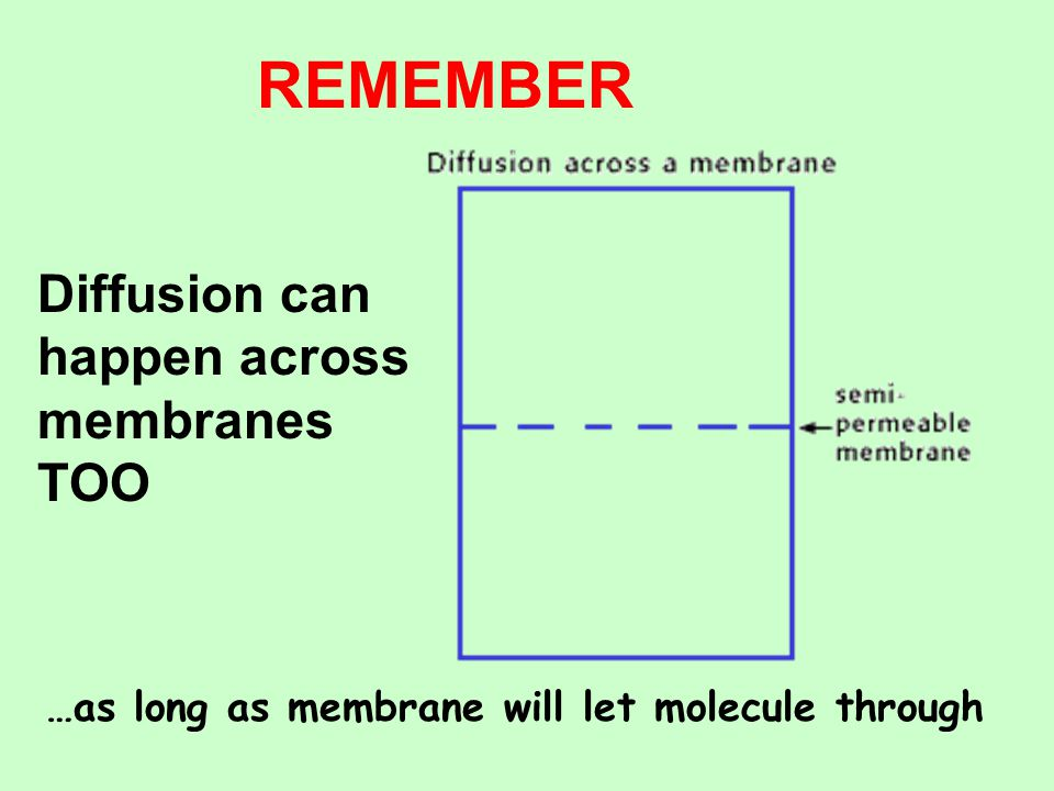 REMEMBER Diffusion can happen across membranes TOO
