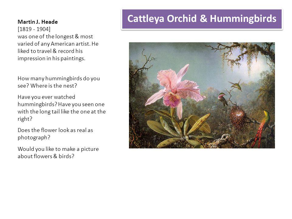 Cattleya Orchid & Hummingbirds