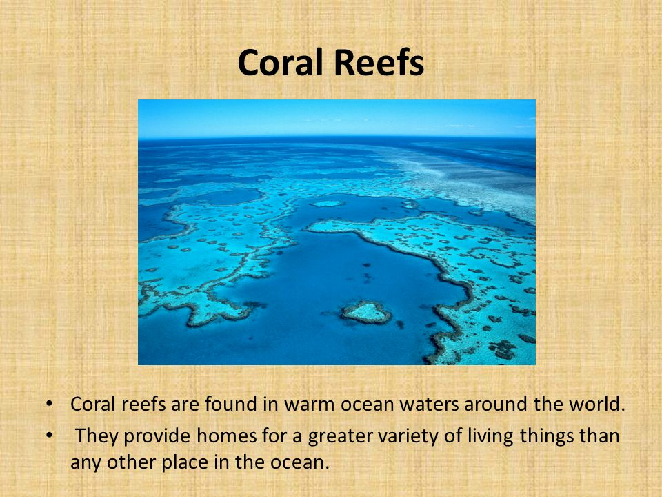 Coral Reefs Coral reefs are found in warm ocean waters around the world.