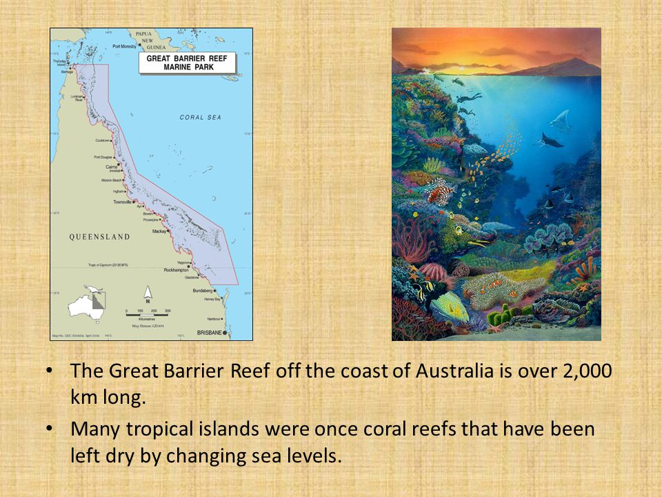 The Great Barrier Reef off the coast of Australia is over 2,000 km long.