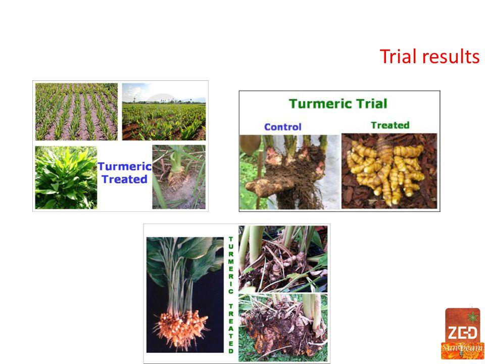 Trial results