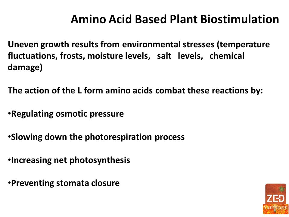 Amino Acid Based Plant Biostimulation