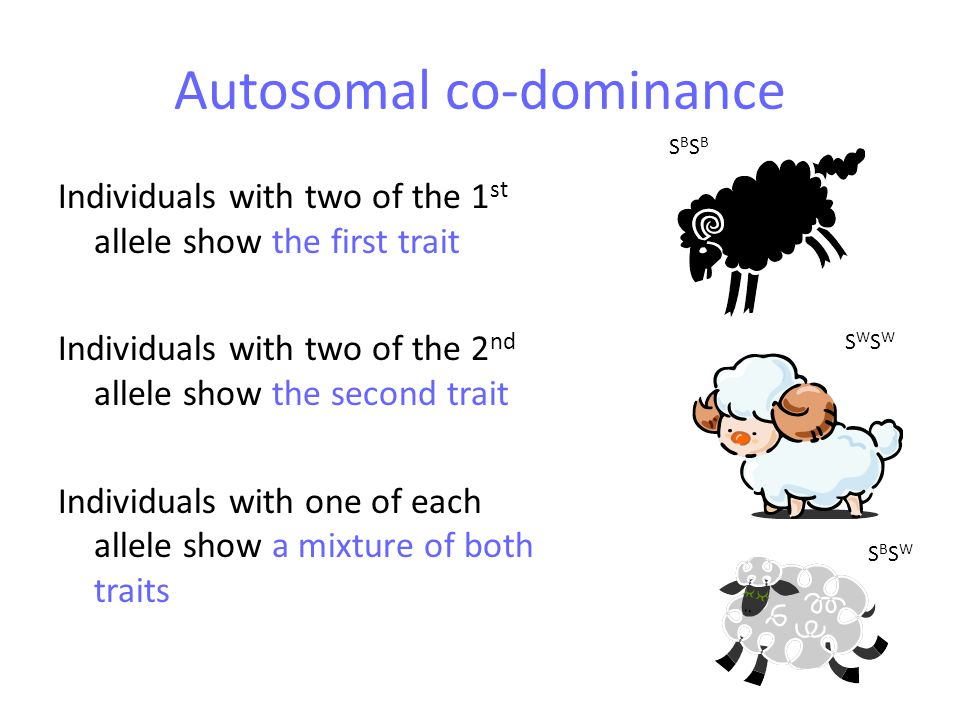 Autosomal co-dominance