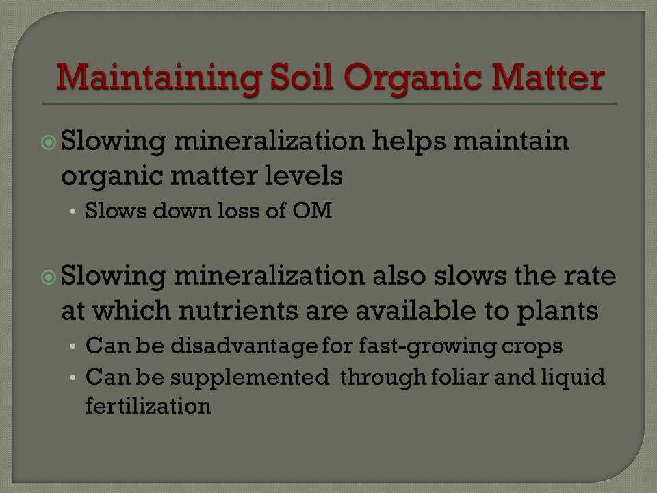 Maintaining Soil Organic Matter