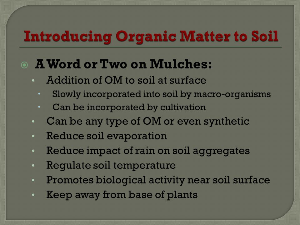 Introducing Organic Matter to Soil