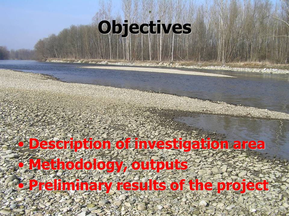 Objectives Description of investigation area Methodology, outputs