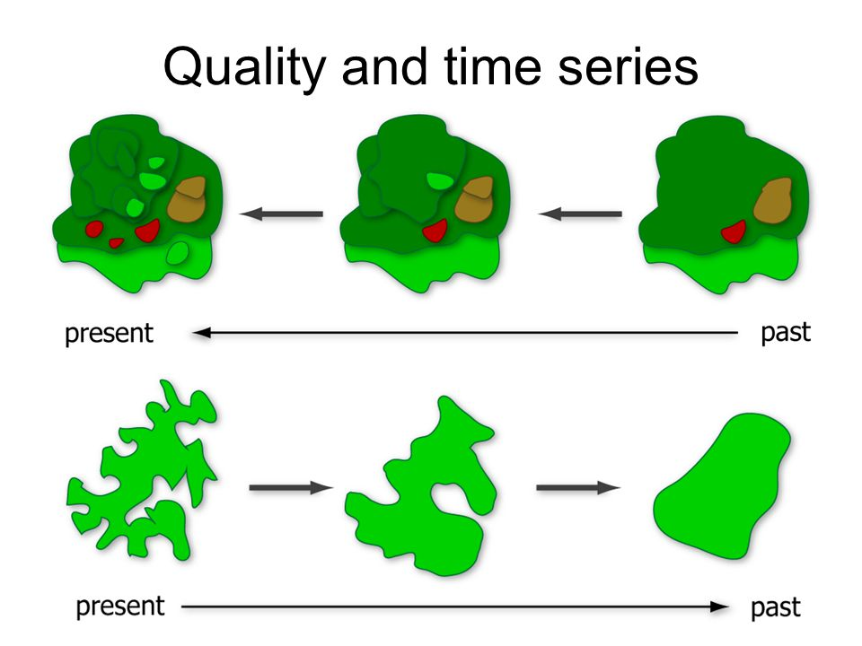 Quality and time series