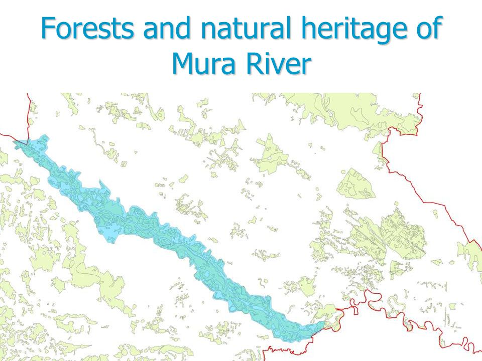 Forests and natural heritage of Mura River