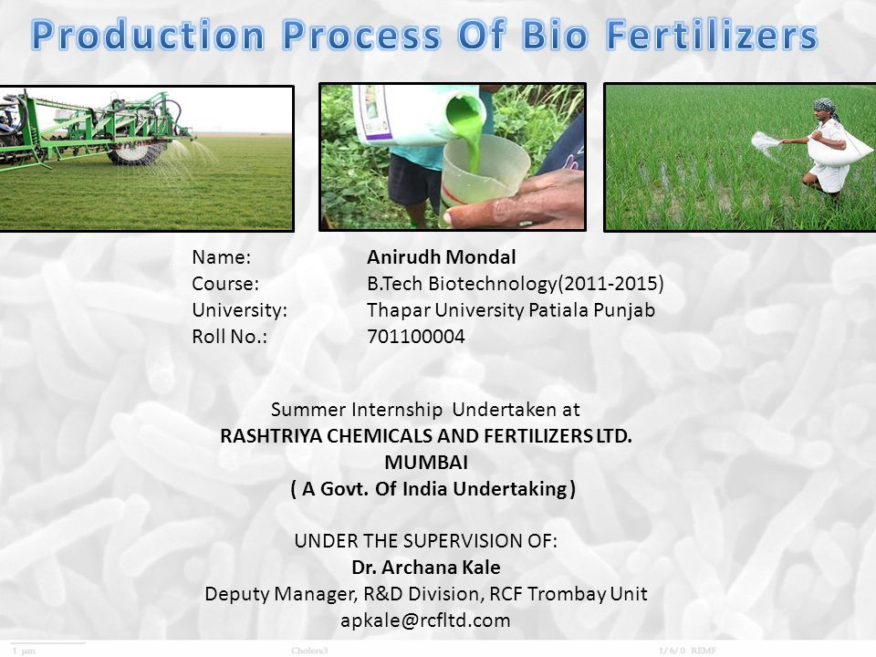 Production Process Of Bio Fertilizers