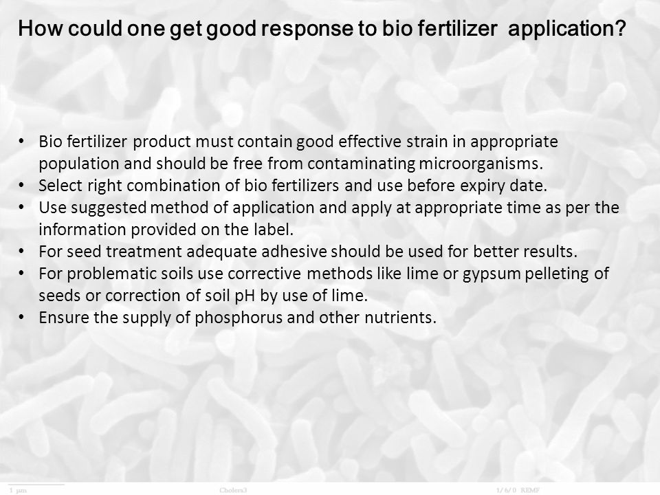 How could one get good response to bio fertilizer application