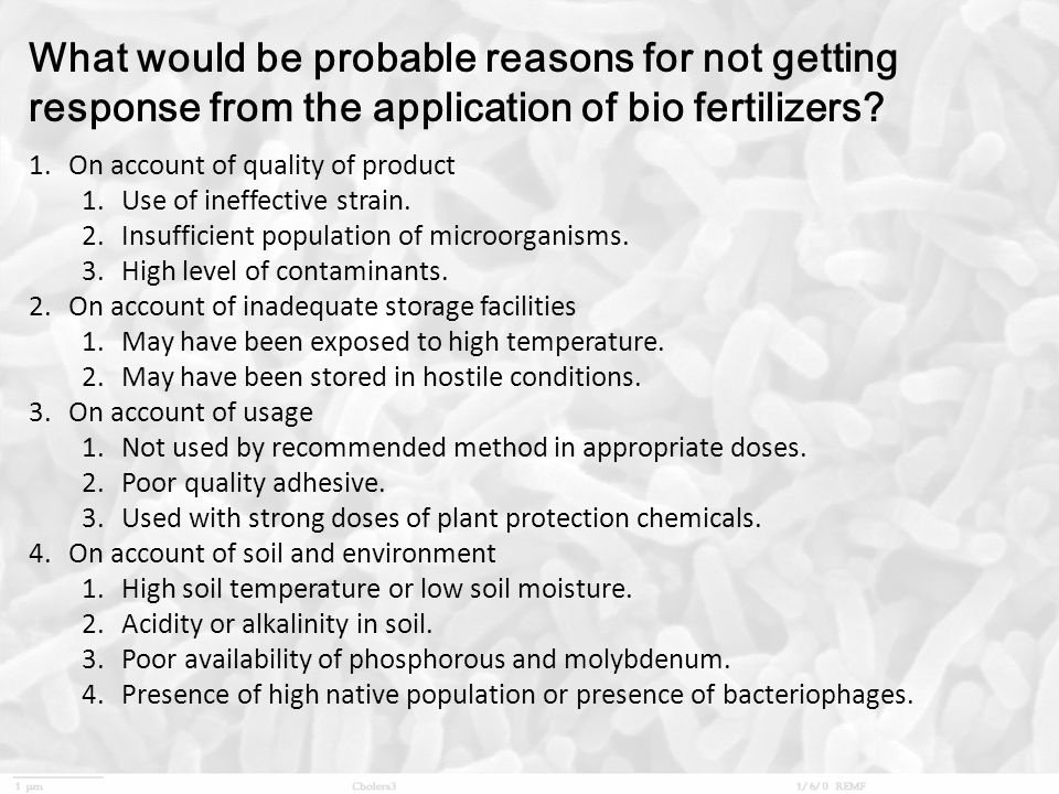 What would be probable reasons for not getting response from the application of bio fertilizers