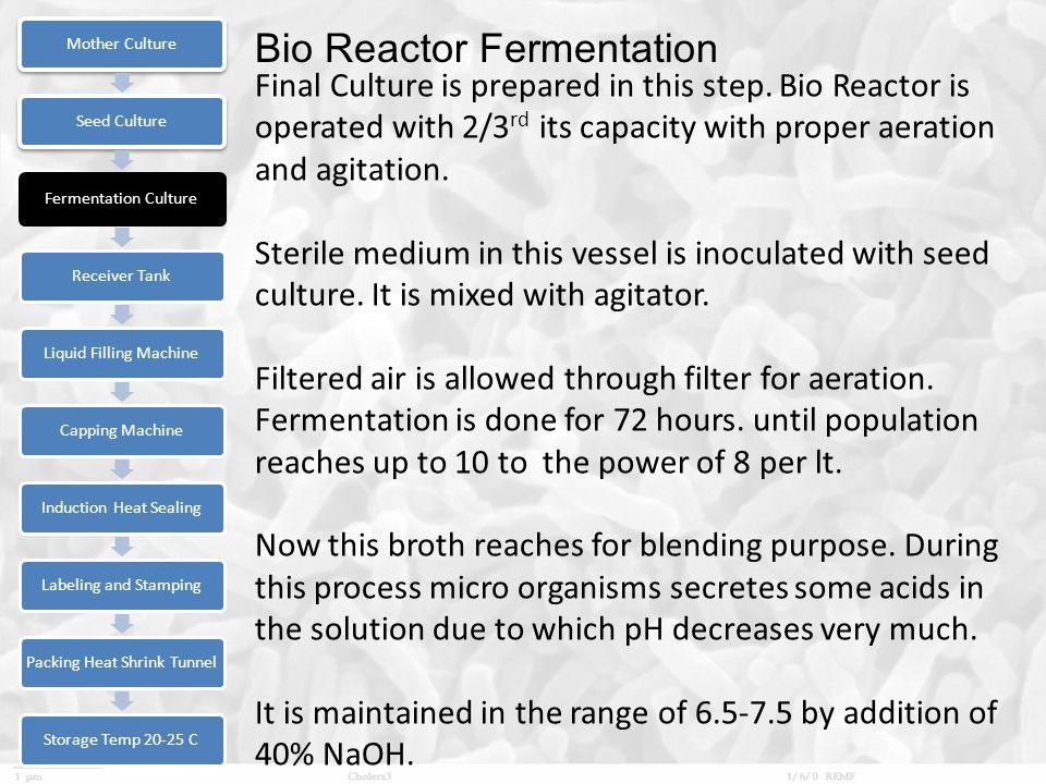Bio Reactor Fermentation