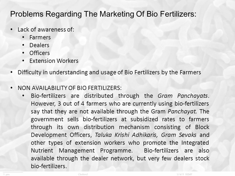 Problems Regarding The Marketing Of Bio Fertilizers: