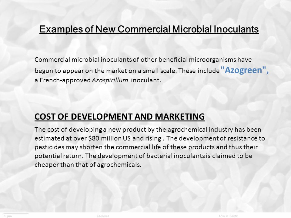 Examples of New Commercial Microbial Inoculants