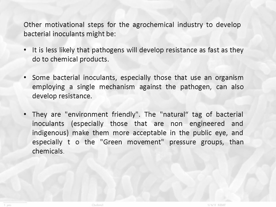 Other motivational steps for the agrochemical industry to develop bacterial inoculants might be: