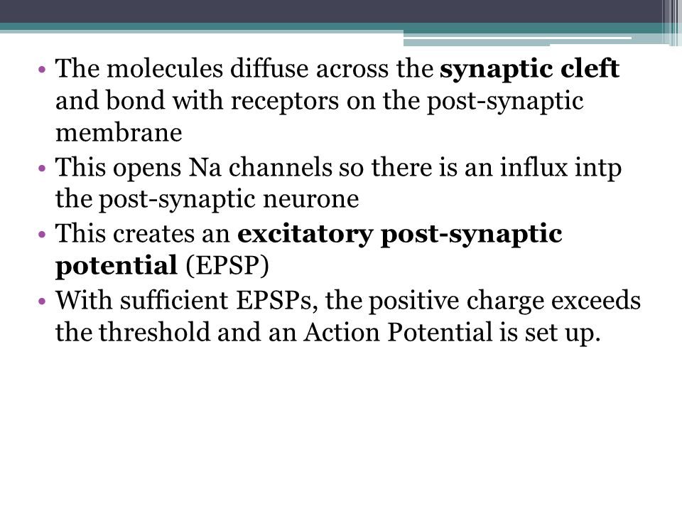 The molecules diffuse across the synaptic cleft and bond with receptors on the post-synaptic membrane
