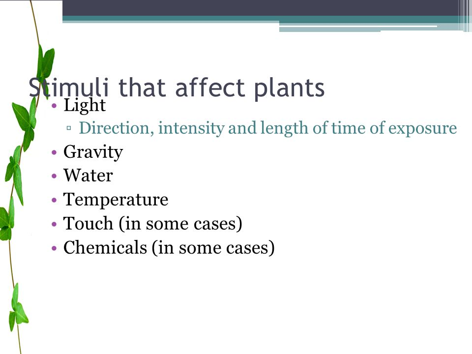 Stimuli that affect plants