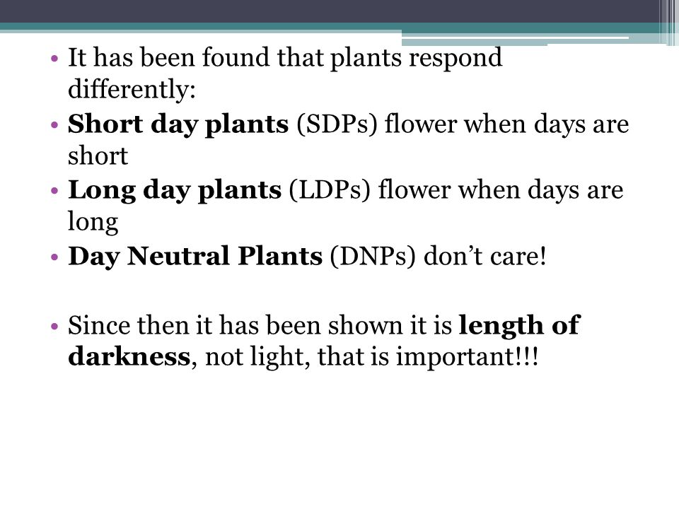 It has been found that plants respond differently: