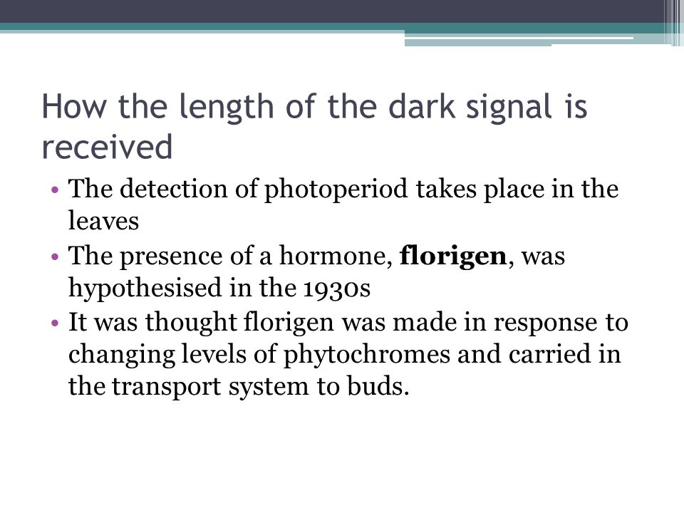How the length of the dark signal is received