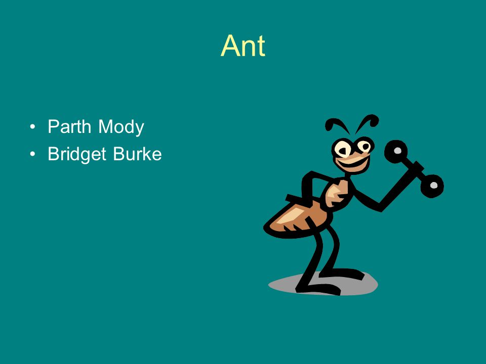 Ant Parth Mody Bridget Burke