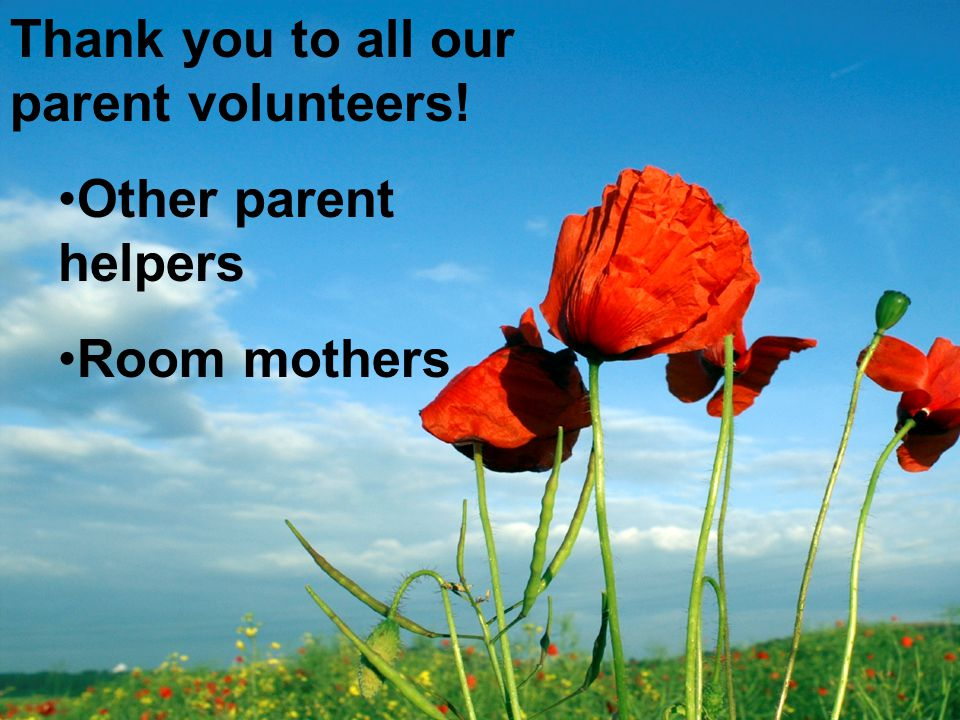 Thank you to all our parent volunteers!