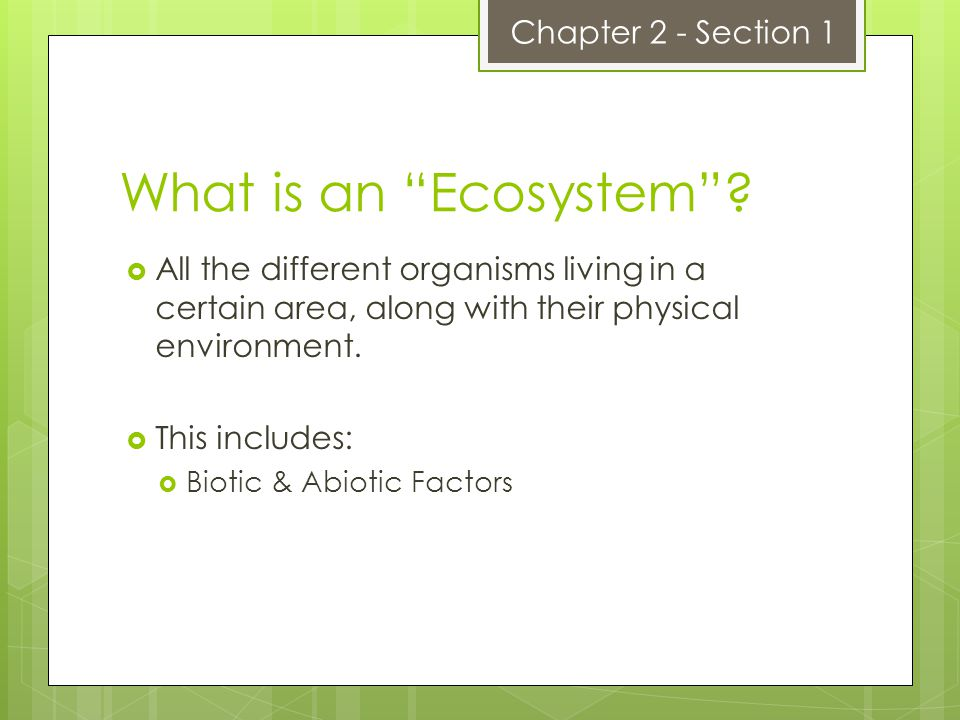 What is an Ecosystem Chapter 2 - Section 1