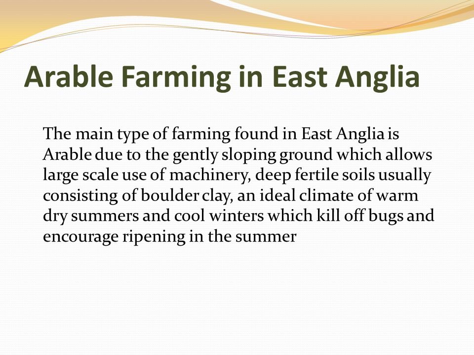 Arable Farming in East Anglia