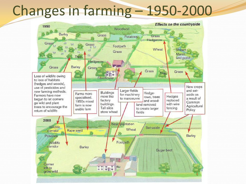 Changes in farming – 1950-2000