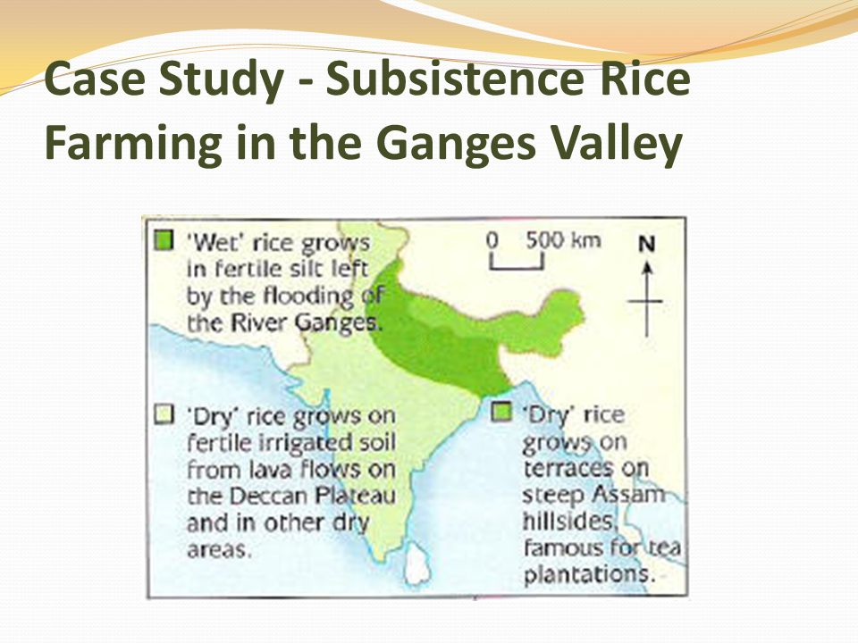 Case Study - Subsistence Rice Farming in the Ganges Valley