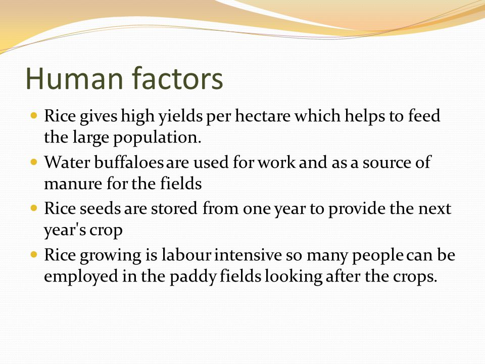 Human factors Rice gives high yields per hectare which helps to feed the large population.