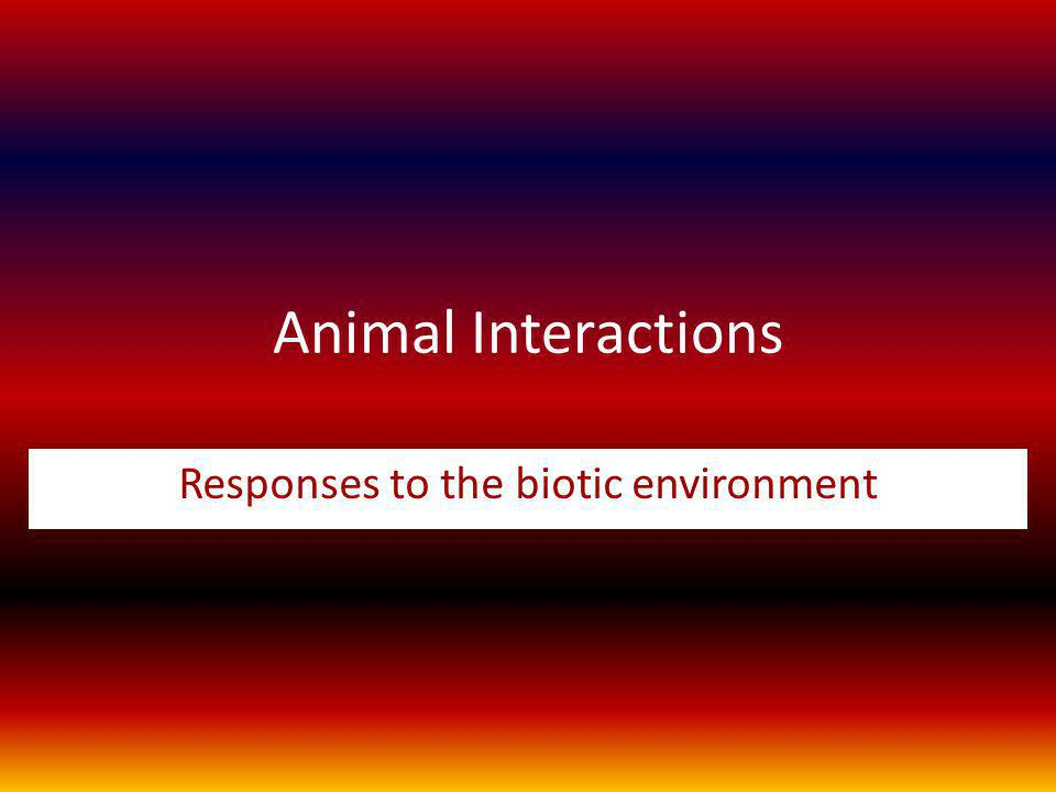 Responses to the biotic environment