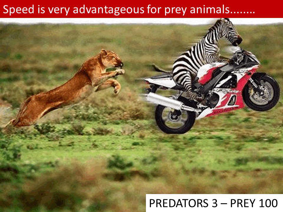 Speed is very advantageous for prey animals