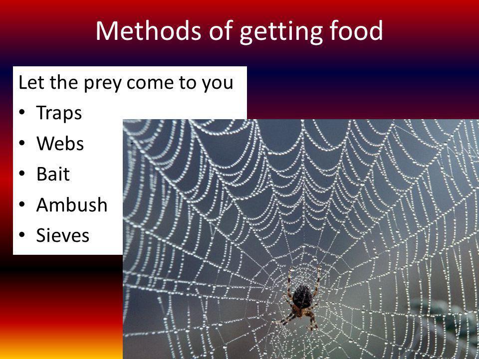 Methods of getting food