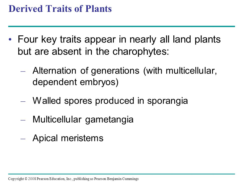 Derived Traits of Plants