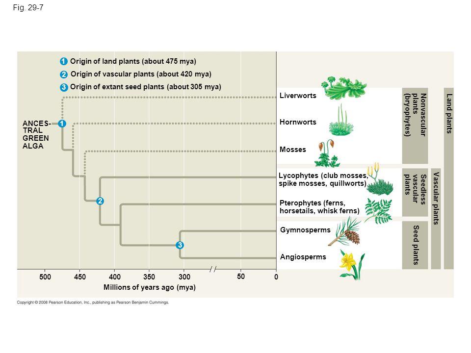 Figure 29.7 Highlights of plant evolution