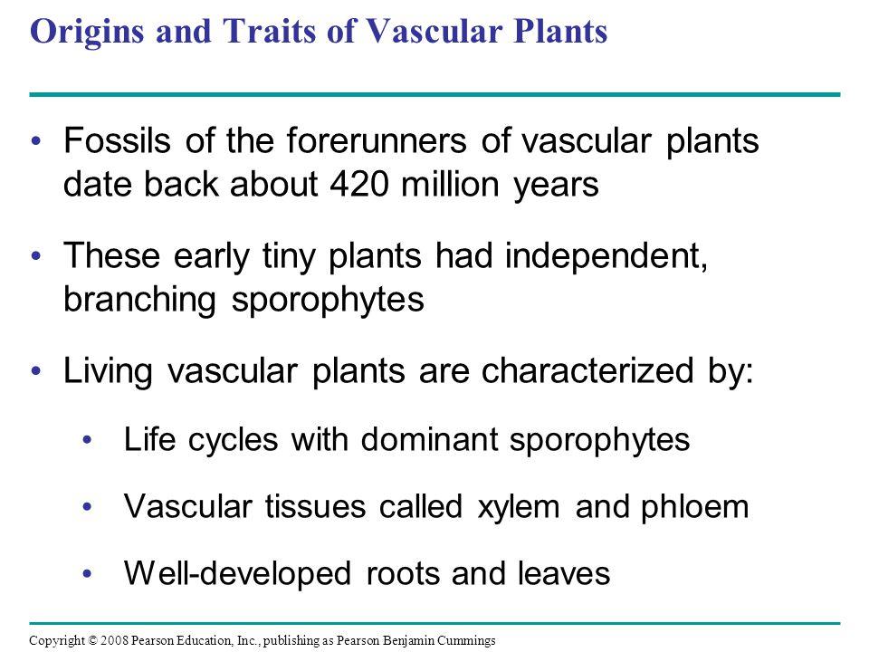 Origins and Traits of Vascular Plants