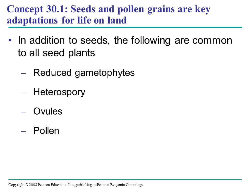 In addition to seeds, the following are common to all seed plants
