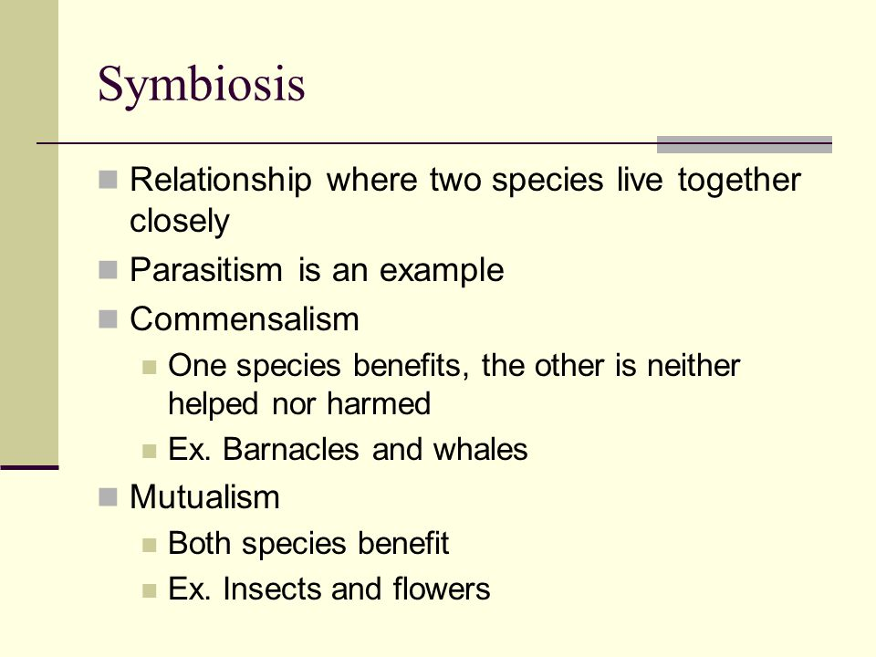 Symbiosis Relationship where two species live together closely