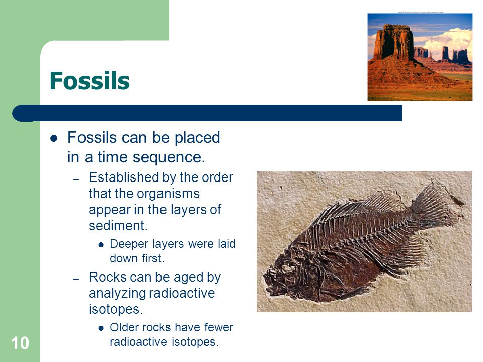 Fossils Fossils can be placed in a time sequence.